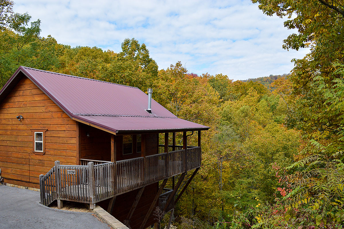 Fantastic Pigeon Forge Chalets Pigeon Forge Cabins With One Bedroom Home Interior And Landscaping Oversignezvosmurscom